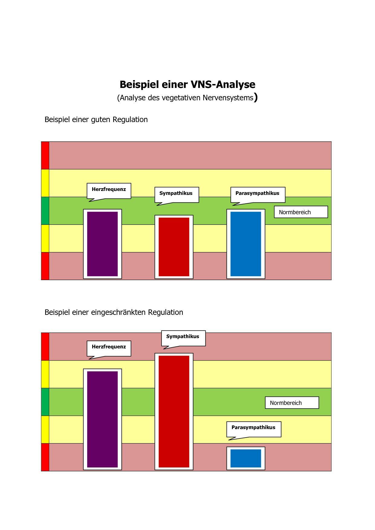Analyse des vegetativen Nervensystems | Barth-Steinfurt.de | Dr. med ...